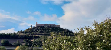 Montfalcó Murallat i la Segarra històrica